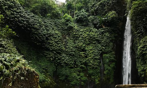 Hunting for waterfalls in Munduk