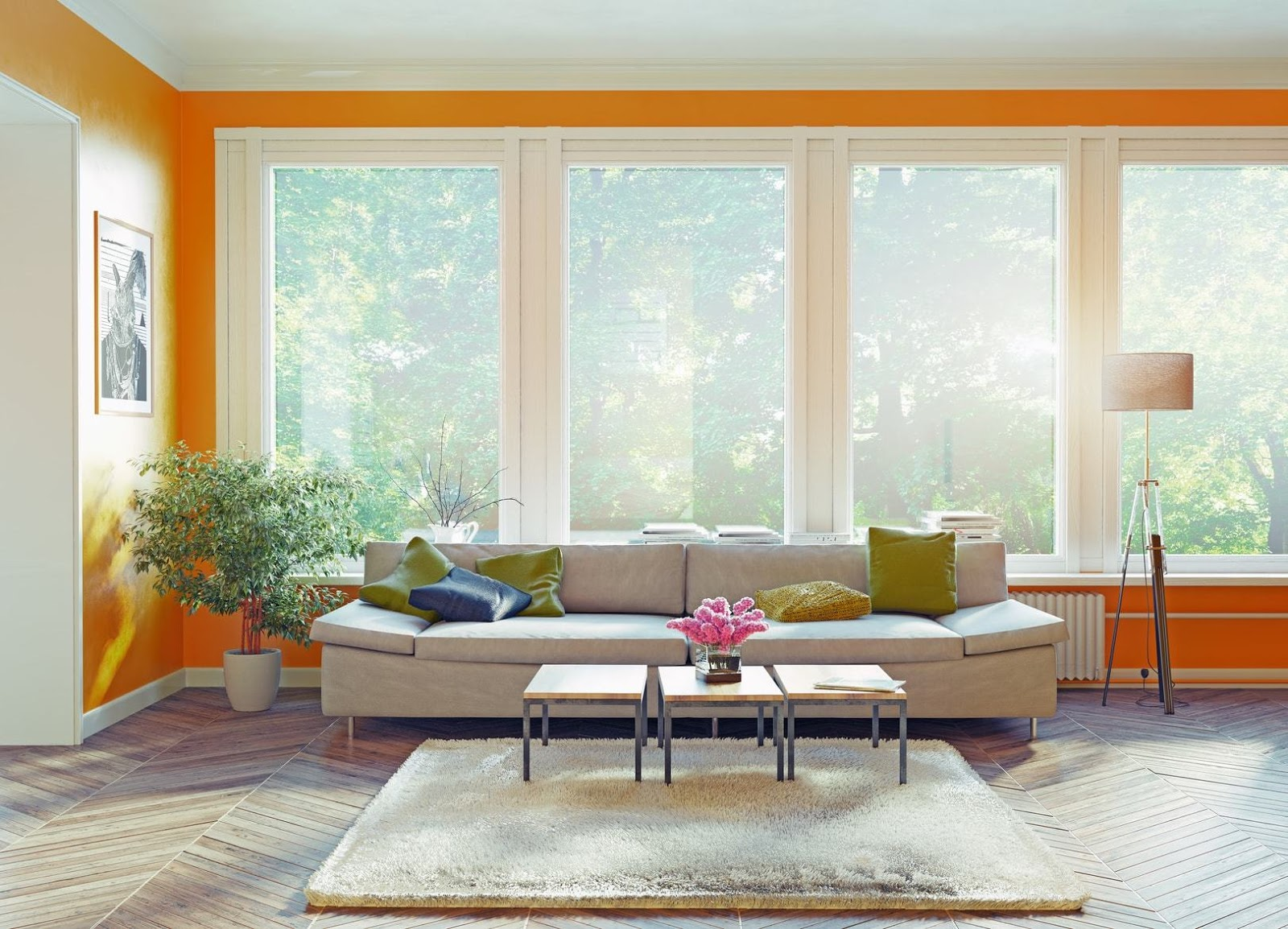 Add More Natural light Into your Home 2