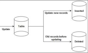 audit processes